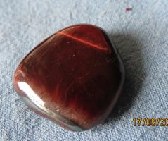 Red Tigers Eye 1 by Kattvinge