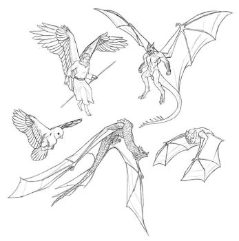 How to draw and animate wings by MonikaZagrobelna