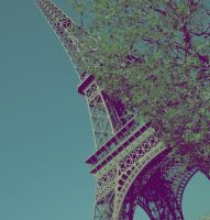 eiffel tower2. by paulinpaulin
