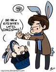 Doctor Who - Bunny! Doctors by caycowa
