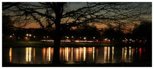 Lights in the park by kijuri