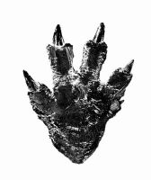 Godzilla 2016: Footprint of the King by sonichedgehog2