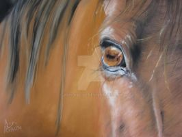 Right in the eye by Aspi-Galou