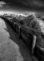 beach path by awjay