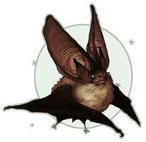 Plecotus auritus vampirus wtfu by NightmareHound