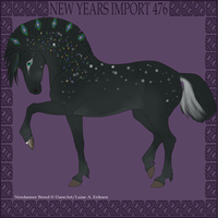 Nordanner Import 476 by Dollyrawr