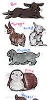 Bunnies by senpeep