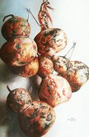 Calabashes, oils by SamanthaJordaan