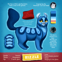 Rizzle by Rainroad