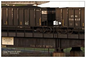 The Cow is Now by factorone33