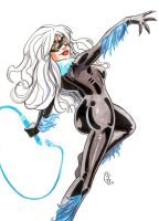 Black Cat maker sketch by Axigan