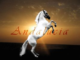 Andalucia by AngelyDante