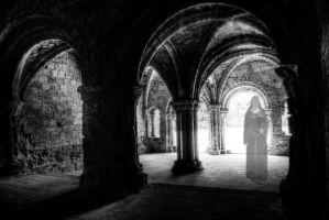 Lady in the Crypt by Rachelevans1013