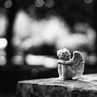 Even the angels turn their heads by Peterix