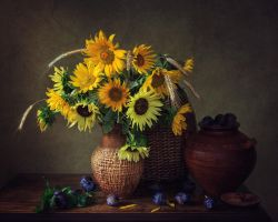 Still life with sunflowers and plums by Daykiney