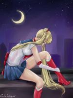 Sailor Moon - Rooftop by CamiiW