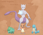Welcome Back to the World of Pokemon by MistyKoopa