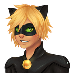 Miraculous Chat Noir by Cantrona