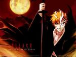 bleach pictures by Littleone18