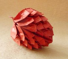 Pinecone by fractalbeauty25