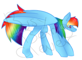 Rainbow Dash by BusyBeingClever