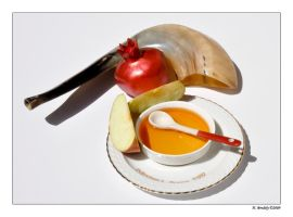 Happy New - Shana Tova by hbrodsly