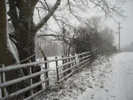 Wintery landscape stock by photodash