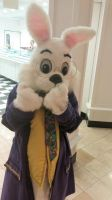 The 2015 Chandler Mall Easter Bunny 1 by BigMac1212