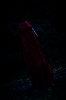 Red Riding Hood [OUaT] -  Deep in the Forest by Sayuri-Shinichi