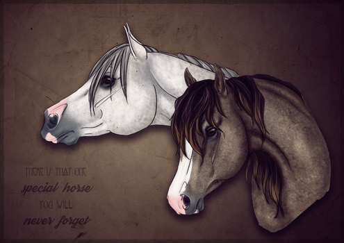 That one horse you will never forget by Katha88