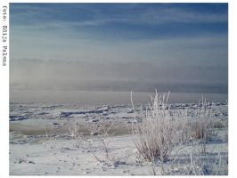 winterscape by edips