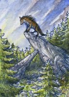 ACEO for Myenia by Dragarta
