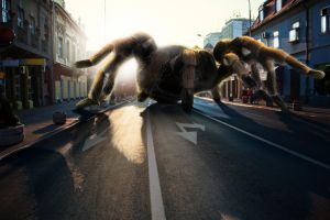 Spidey on the loose! by louisstilling