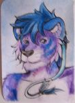 ACEO Quzire by Drrrakonis