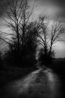 Road to nowhere by TomeX86