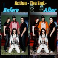 The End .- Action by ann483