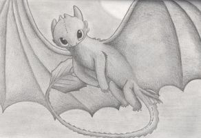 Toothless - Night Fury by HiccToothFan