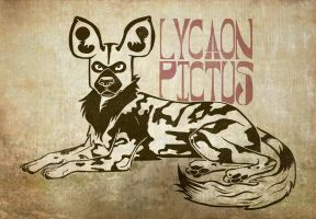 The African Wild Dog - Lycaon pictus by MonicaMcClain