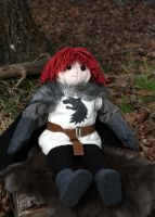 Bran Stark Doll by padfootb3