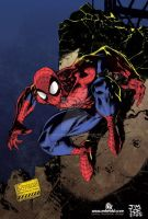 Spiderman Jim Lee colors me by mdavidct