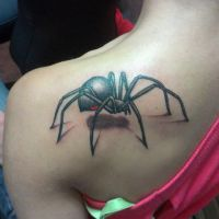 3D Spider Tattoo by ngoc50