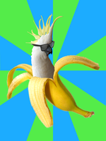 Banana Parrot by Valdevia