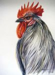 Mireldis Rooster 2 by HouseofChabrier