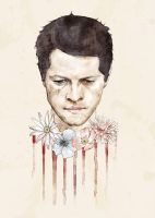 Cas with flowers by drcolour