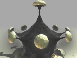 Koch mushrooms by batjorge