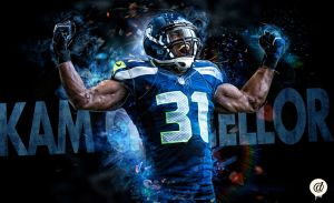 Congratulations to the Seattle Seahawks by 31ANDONLY