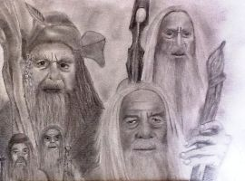 The Hobbit the 5 Wizards by isabel56