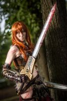 Female Barbarian , Diablo III by Zephyier