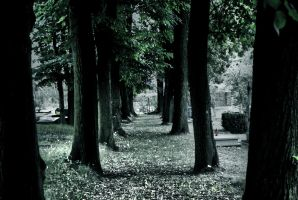 cemetery path by Mortsnort