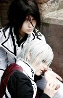 Vampire Knight - Hidden Truth by Aoinagaru